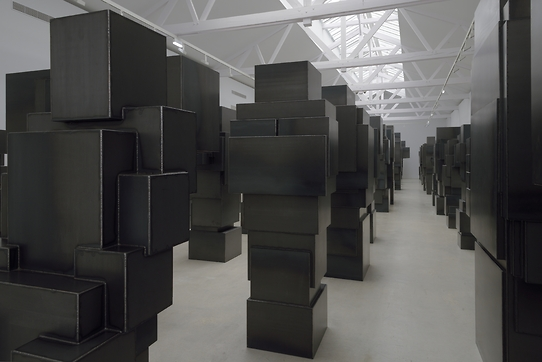 Expansion FIELD © Charles DUPRAT Galerie THADDAEUS ROPAC 2015